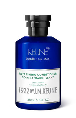 Billede af 1922 Refreshing Conditioner 250 ml.